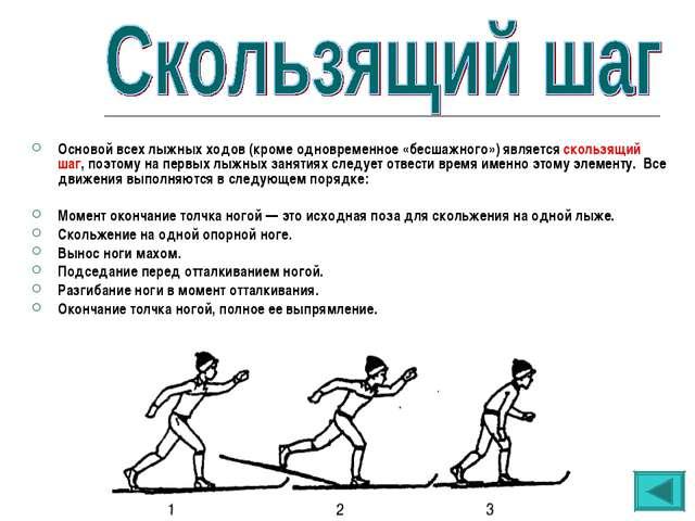 Основой всех лыжных ходов (кроме одновременное «бесшажного») является скользя...
