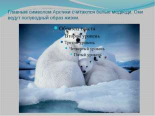 Главным символом Арктики считаются белые медведи. Они ведут полуводный образ