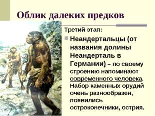 Облик далеких предков Третий этап: Неандертальцы (от названия долины Неандерт