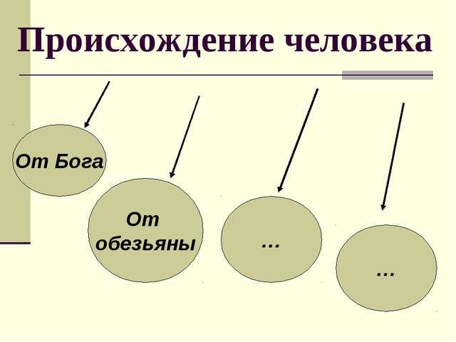 история древнейшего человека презентация