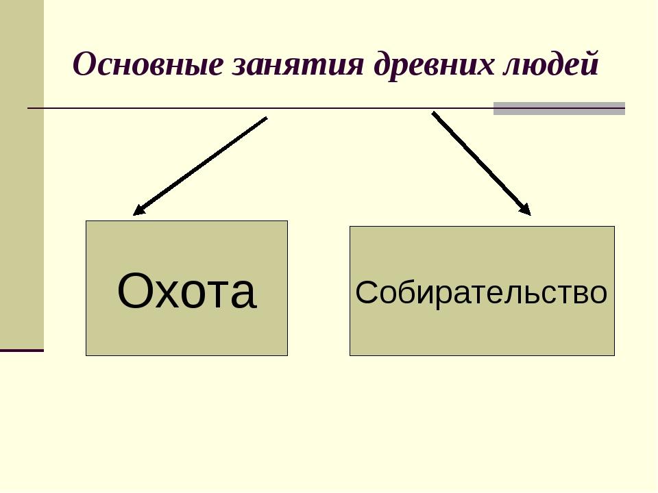 Основные занятия древних людей Охота Собирательство