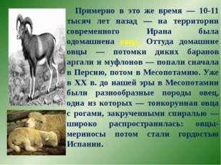 Примерно в это же время — 10-11 тысяч лет назад — на территории современного