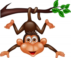Monkey Illustration Stock Photos, Pictures, Royalty Free Monkey Illustration Images And Stock Photography