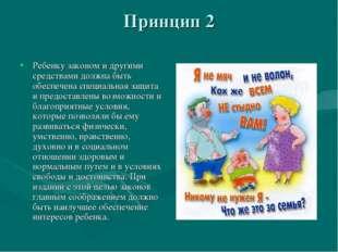 Принцип 2 Ребенку законом и другими средствами должна быть обеспечена специал