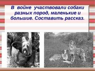 В войне участвовали собаки разных пород, маленькие и большие. Составить расск