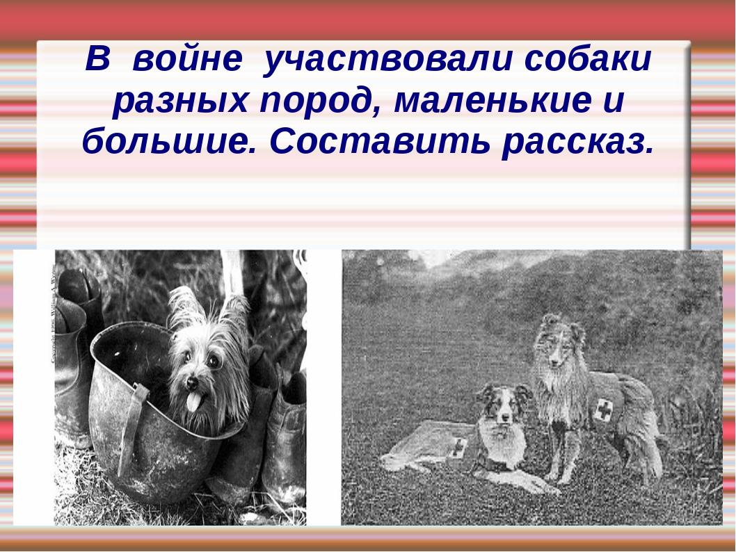 В войне участвовали собаки разных пород, маленькие и большие. Составить расск...