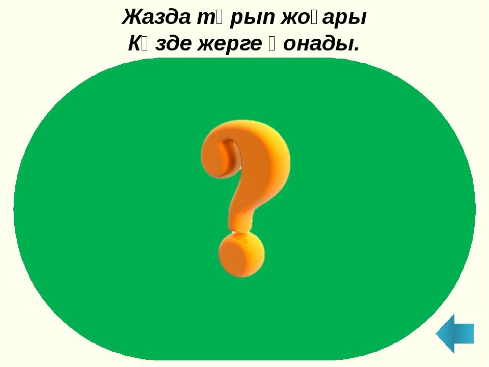 Шалқан