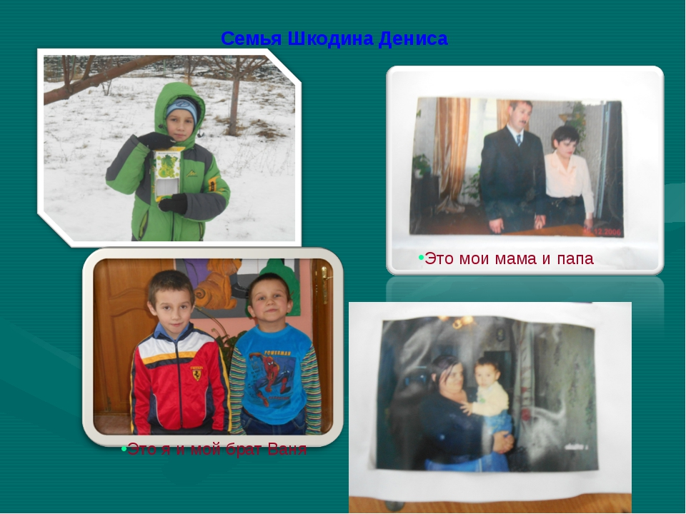 Семья Шкодина Дениса Это мои мама и папа Это я и мой брат Ваня Это мои мама и...