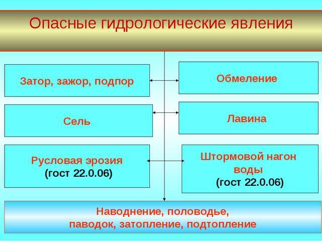 Опасные гидрологические явления Затор, зажор, подпор Сель Лавина Штормовой на...