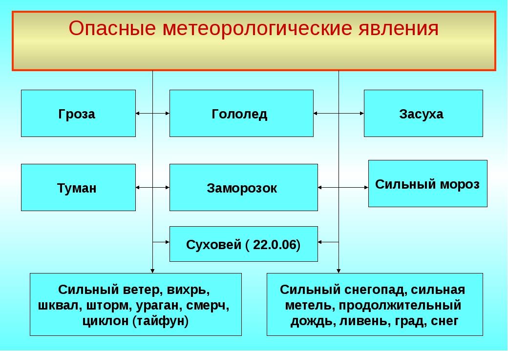 Опасные метеорологические явления Гроза Заморозок Суховей ( 22.0.06) Туман Си...