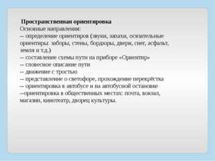 Пространственная ориентировка Основные направления: -- определение ориентиро