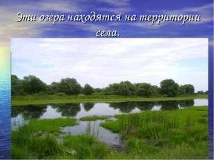 Эти озера находятся на территории села.