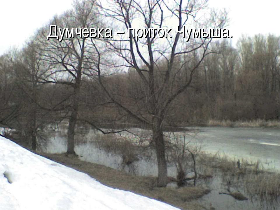 Думчевка – приток Чумыша.