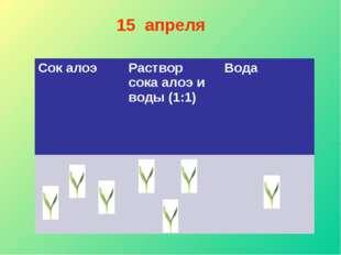 15 апреля Сок алоэ Раствор сока алоэ и воды (1:1) Вода