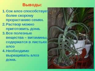 Выводы: Сок алоэ способствует более скорому прорастанию семян. Раствор можно