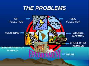 THE PROBLEMS AIR POLLUTION SEA POLLUTION ACID RAINS GLOBAL WARMING DISAPPEARI