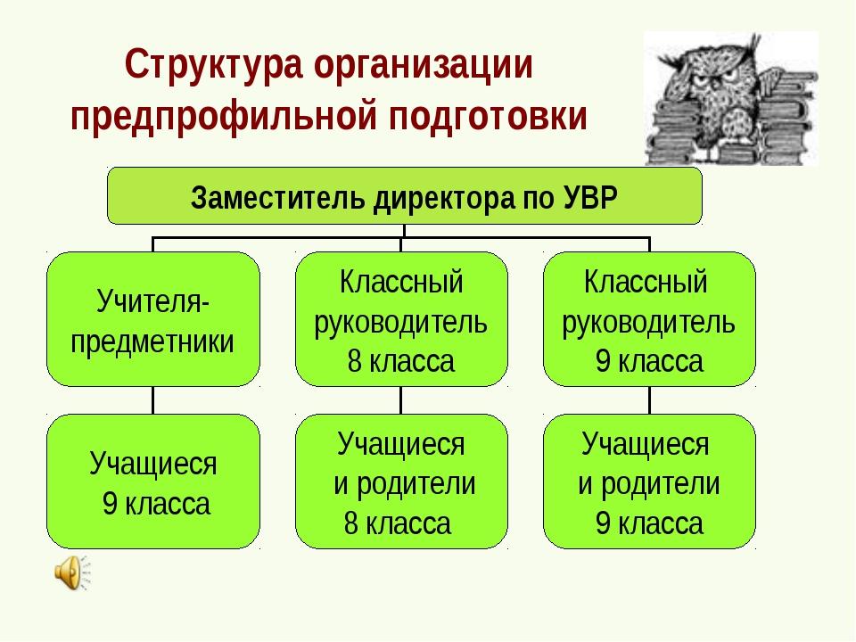 Структура организации предпрофильной подготовки