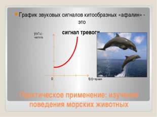 Практическое применение: изучение поведения морских животных График звуковых
