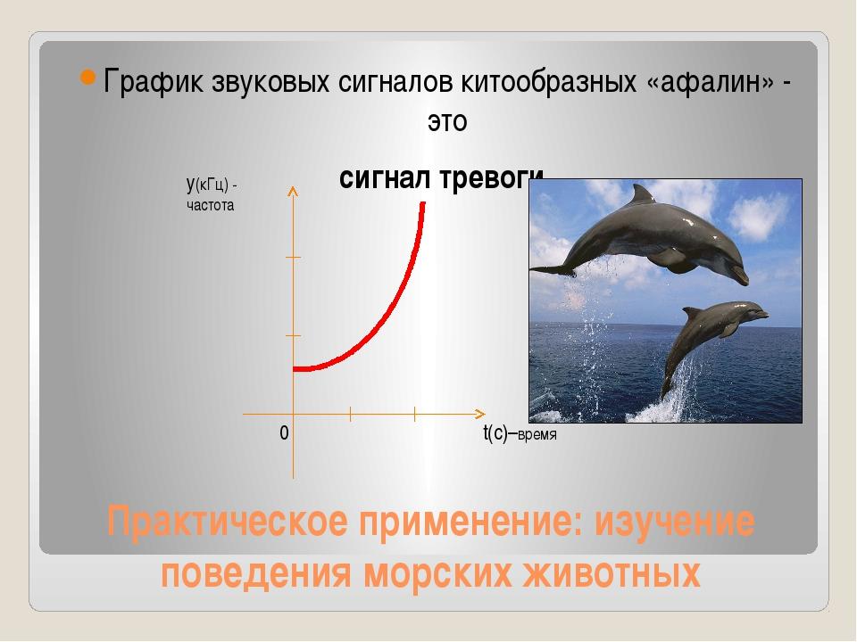 Практическое применение: изучение поведения морских животных График звуковых...