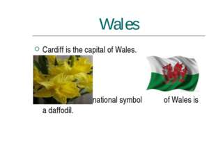 Wales Cardiff is the capital of Wales. The national symbol of Wales is a daff