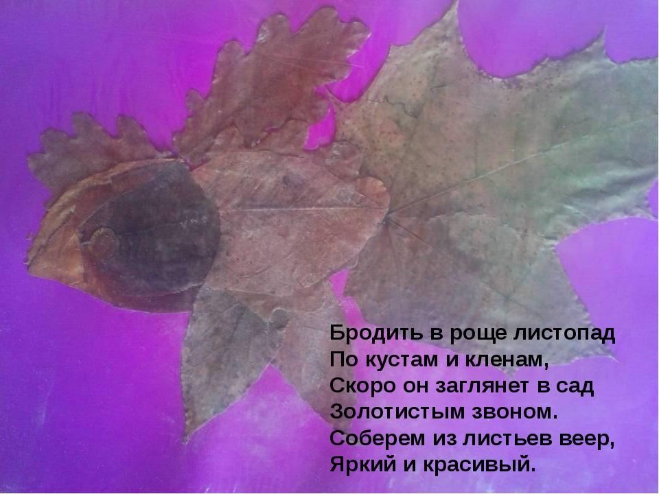 Бродить в роще листопад По кустам и кленам, Скоро он заглянет в сад Золотисты...