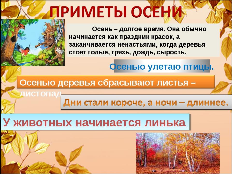 Осень – долгое время. Она обычно начинается как праздник красок, а заканчива...