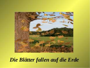 Die Blätter fallen auf die Erde