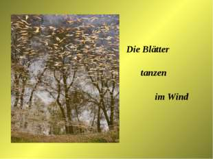 Die Blätter tanzen im Wind