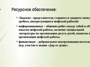 Ресурсное обеспечение: Людские - представители старшего и среднего звена (реб