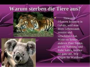 Warum sterben die Tiere aus? Tiere und Pflanzen kommen in Gefahr, weil man i