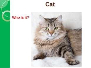 Cat Who is it?