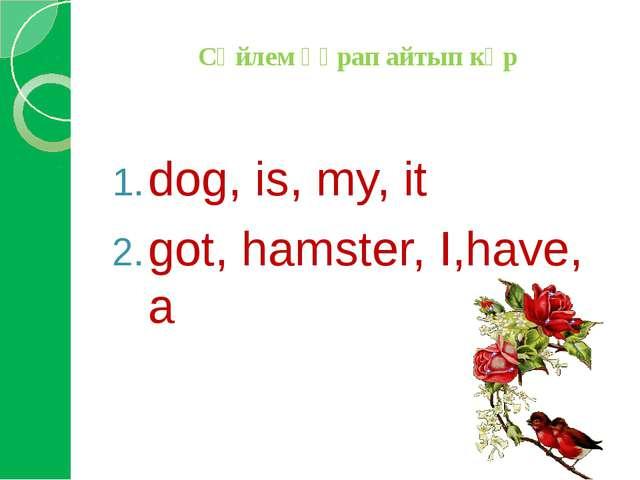 Сөйлем құрап айтып көр dog, is, my, it got, hamster, I,have, a