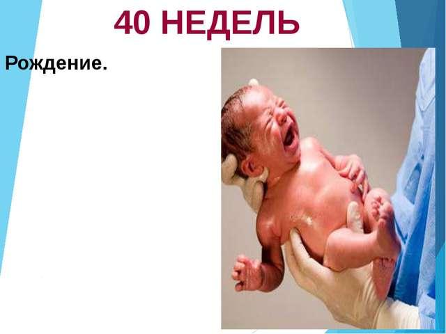 40 НЕДЕЛЬ Рождение.