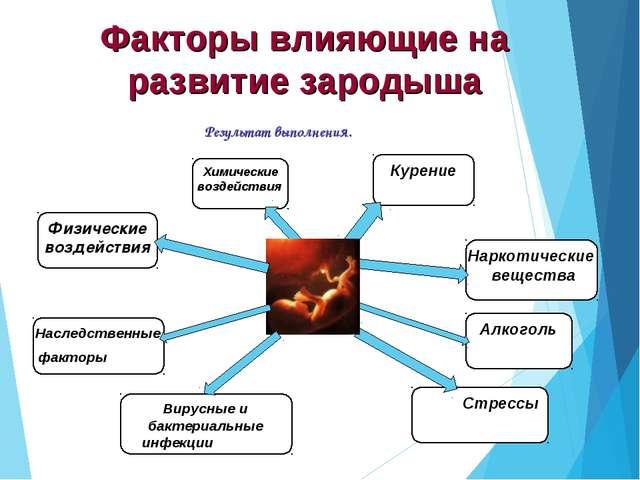 Факторы влияющие на развитие зародыша Результат выполнения.
