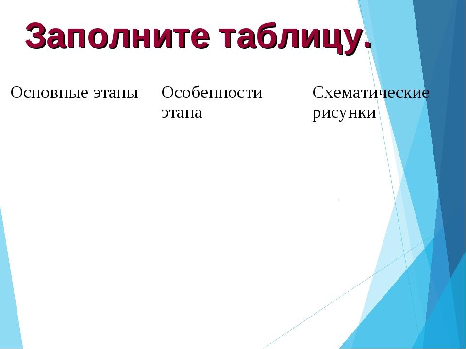 Заполните таблицу. Основные этапыОсобенности этапаСхематические рисунки...