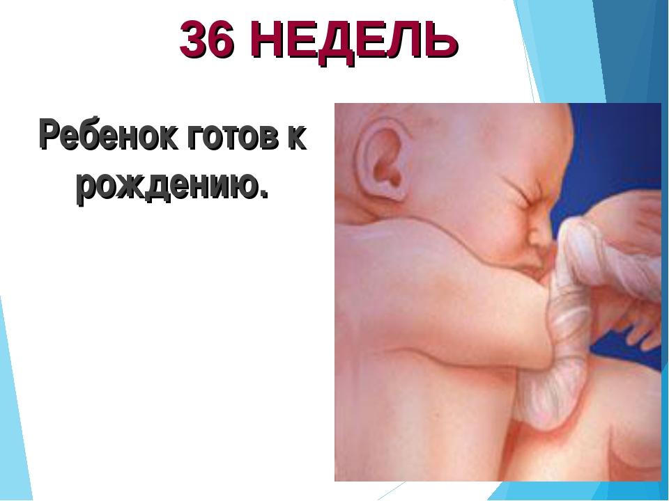36 НЕДЕЛЬ Ребенок готов к рождению.