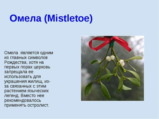 Омела является одним из главных символов Рождества, хотя на первых порах церк...