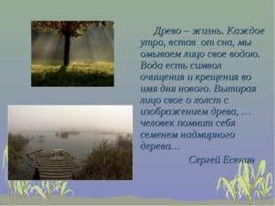 Древо – жизнь. Каждое утро, встав от сна, мы омываем лицо свое водою. Вода е