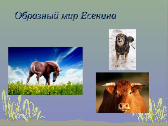 Образный мир Есенина