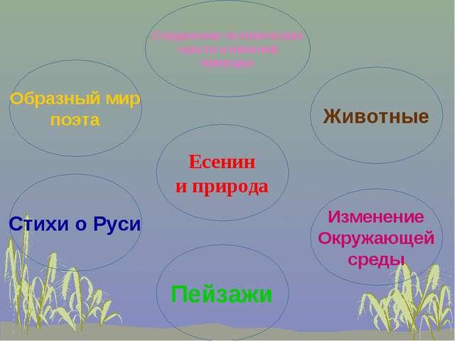 Есенин и природа Образный мир поэта Животные Изменение Окружающей среды Стихи...