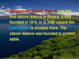 Barguzinsky nature reserve was the first nature reserve in Russia. It was fou