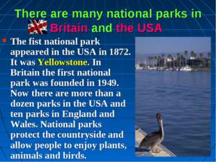 There are many national parks in Britain and the USA The fist national park a