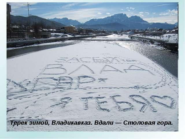 Терек зимой, Владикавказ. Вдали — Столовая гора.