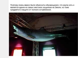 Поэтому очень важно было объяснить обучающимся, что акула хоть и является одн