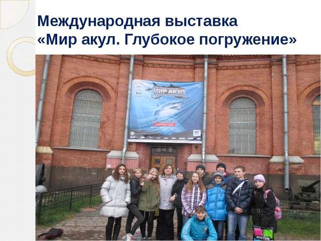 Международная выставка «Мир акул. Глубокое погружение»
