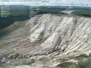 Полезные ископаемые – минералы и горные породы, которые при данном уровне раз