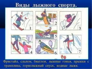 Виды лыжного спорта. . 11 22 3 3 4 5 6.6. 7. Фристайл, слалом, биатлон, лыжны