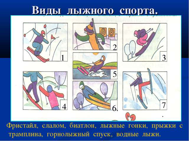 Виды лыжного спорта. . 11 22 3 3 4 5 6.6. 7. Фристайл, слалом, биатлон, лыжны...