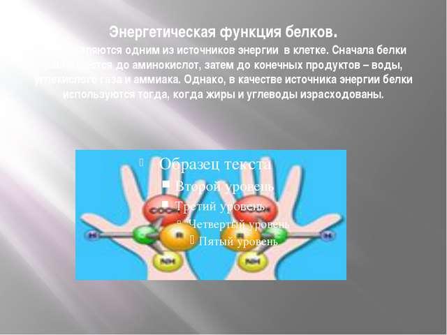 Энергетическая функция белков. Белки являются одним из источников энергии в к...