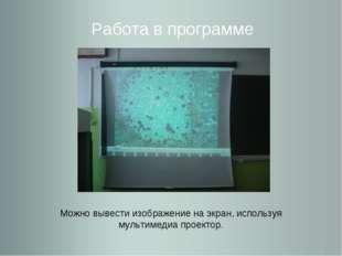 Работа в программе Можно вывести изображение на экран, используя мультимедиа